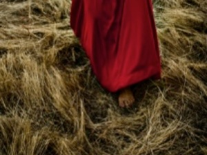 """Witnessing the Resurrection""; John 20:1-18 and Acts 10:34-43; Easter Sunday, March 31, 2013, FPC Jesup"