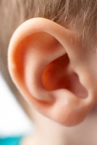 SLIDE 9 - Ear