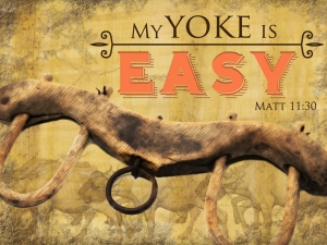 SLIDE 7 – Yoke is Easy
