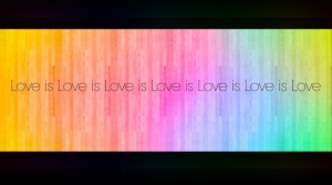 SLIDE 14 - Love is Love